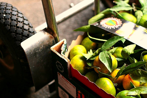 Fruit on Wheels