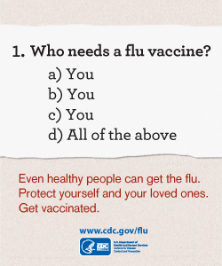 CDC Flu 2013